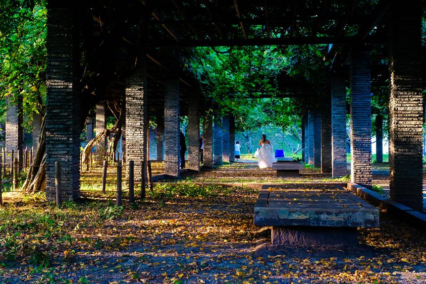 Nhật Bản đẹp mơ màng thời khắc chuyển mùa sang thu