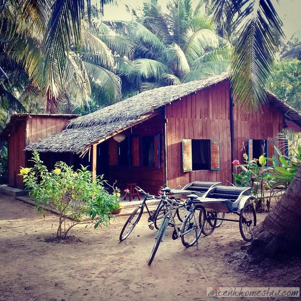 Cocohut Homestay Bến Tre: Review chi tiết nơi ẩn mình giữa rừng dừa