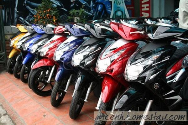 Tổng hợp những địa chỉ cho thuê xe máy ở Phú Quốc giá rẻ chỉ 100k/ngày