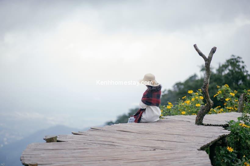Cầu Mây Homestay Tam Đảo: Con đường tre dẫn lối về miền hương thảo