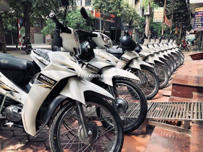 Top 30 địa chỉ cho thuê xe máy Hà Nội giá rẻ uy tín chỉ 100k giao tận nơi