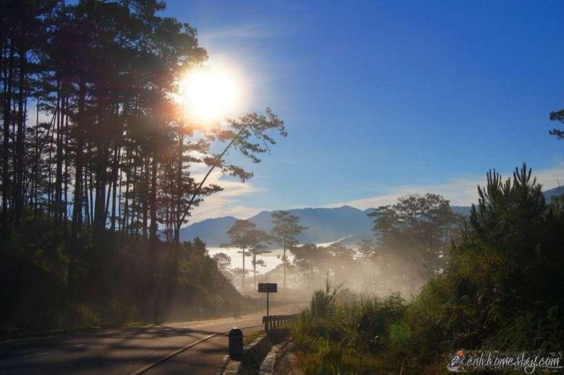"""100 địa điểm du lịch Đà Lạt đẹp """"chụp cháy máy"""", up cả năm mới hết"""