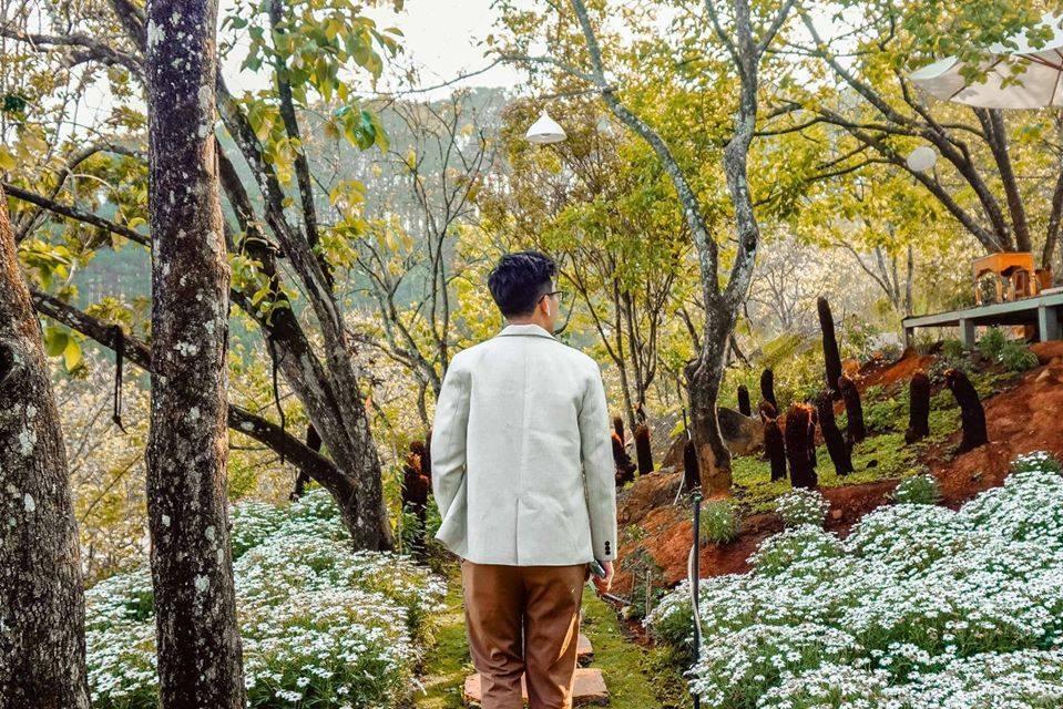 Thung lũng Sun View homestay có khu vườn cúc họa mi cực đẹp