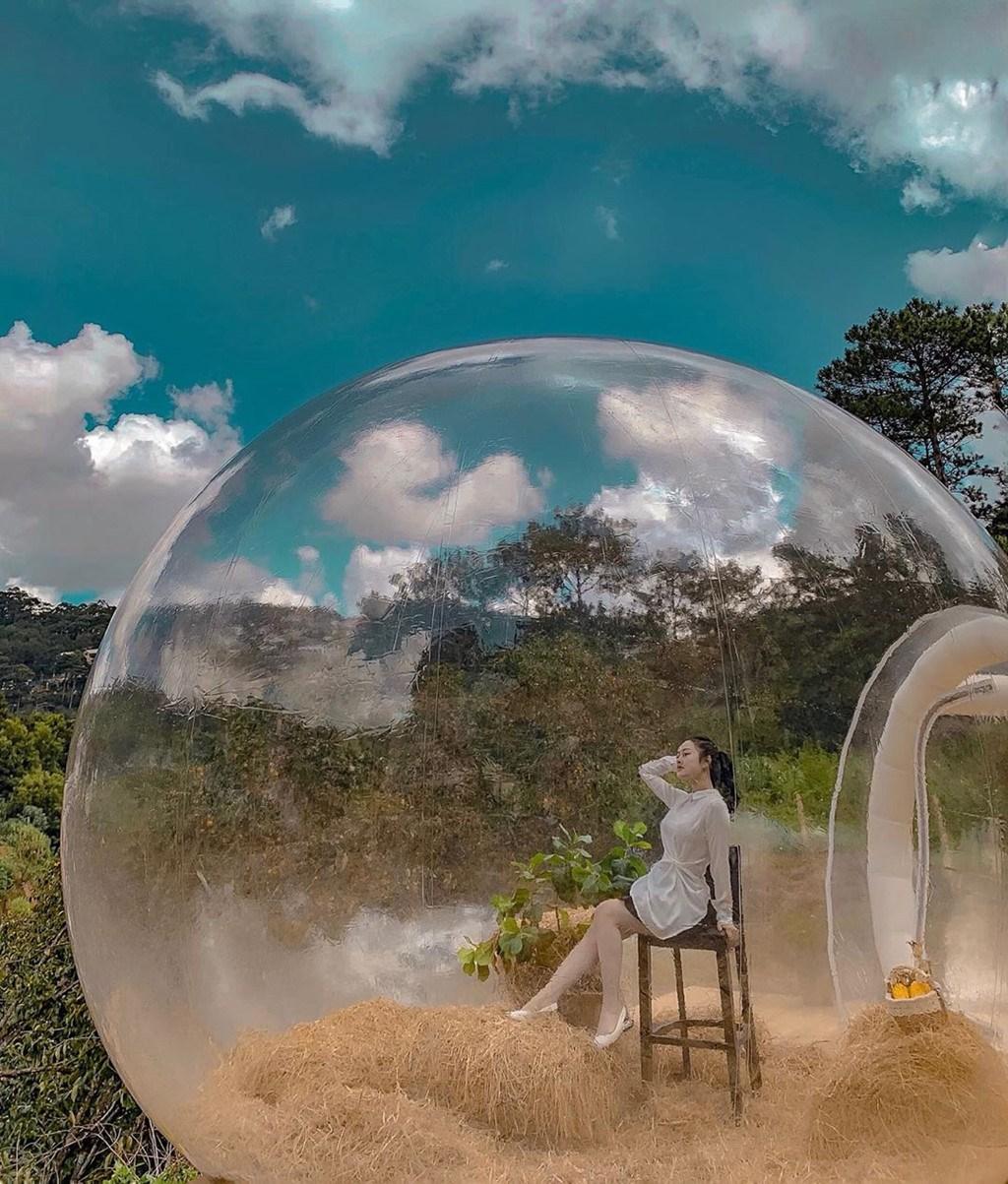 Vườn hồng Nhà Tom Đà Lạt: Giá vé tham quan, có gì chơi chụp ảnh?