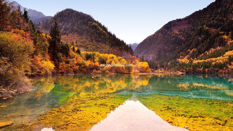 Những cảnh mùa thu tuyệt đẹp bạn không thể bỏ qua trên thế giới