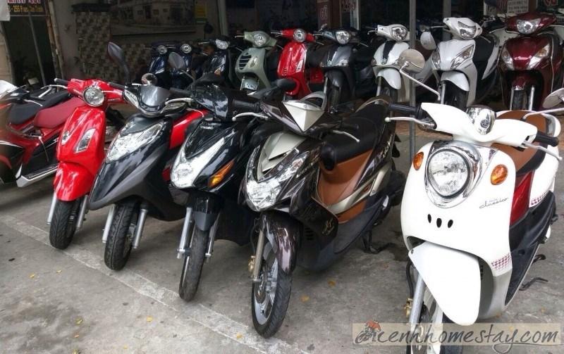 Top địa điểm cho thuê xe máy Đà Nẵng giá rẻ và uy tín chỉ từ 80k/ngày