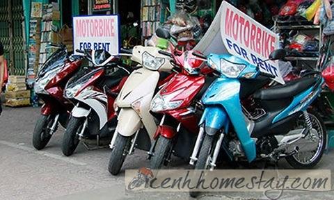 Địa chỉ tin cậy cho thuê xe máy tại Cần Thơ giá rẻ khách nào cũng book