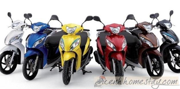 Top địa chỉ cho thuê xe máy tại Tuy Hòa - Phú Yên uy tín giá rẻ