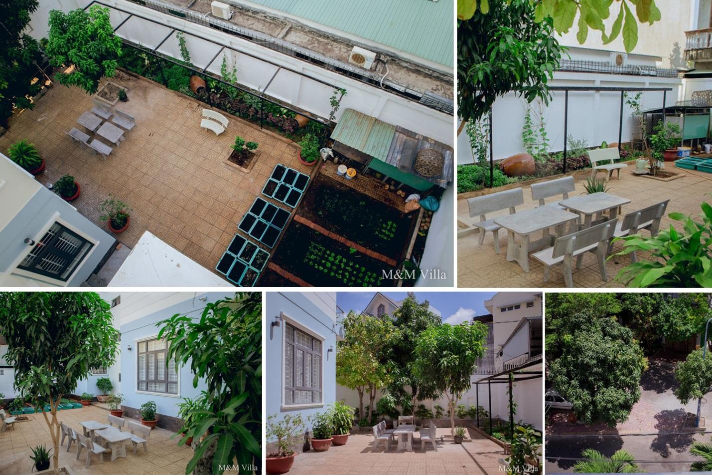 Khám phá M&M Villa Vũng Tàu – Món quà tâm hồn từ thiên nhiên cây cỏ