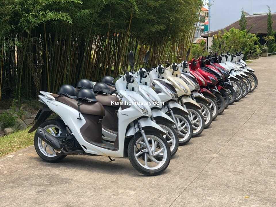 Top 27 địa chỉ cho thuê xe máy Phan Thiết – Mũi Né giá rẻ giao xe tận nơi