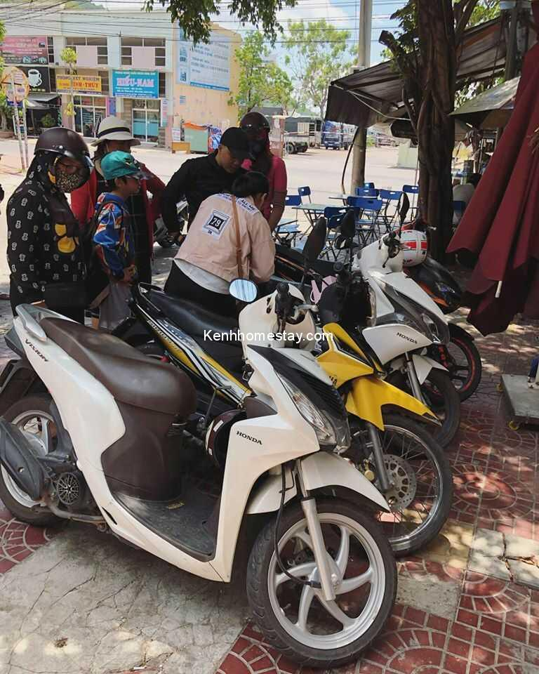 Top 38 địa chỉ cho thuê xe máy Quy Nhơn Bình Định giá rẻ chỉ từ 100k