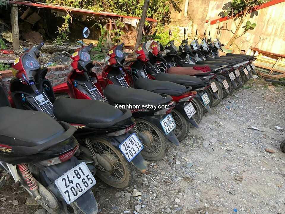 Top 29 địa chỉ cho thuê xe máy Sapa giá rẻ uy tín giao tận nơi chỉ 80k
