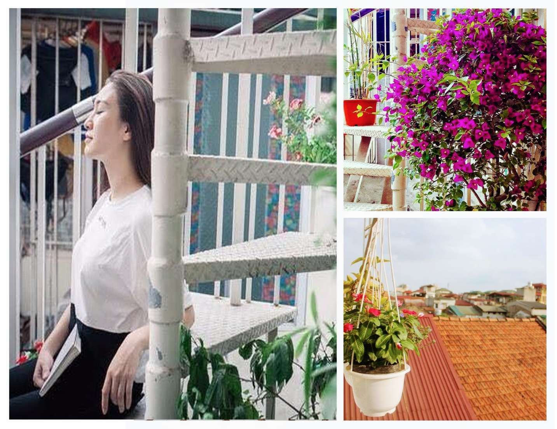 An Family Homestay: Ngẩn ngơ trước nét tinh khôi của nắng, gió và sắc xanh Hà Nội
