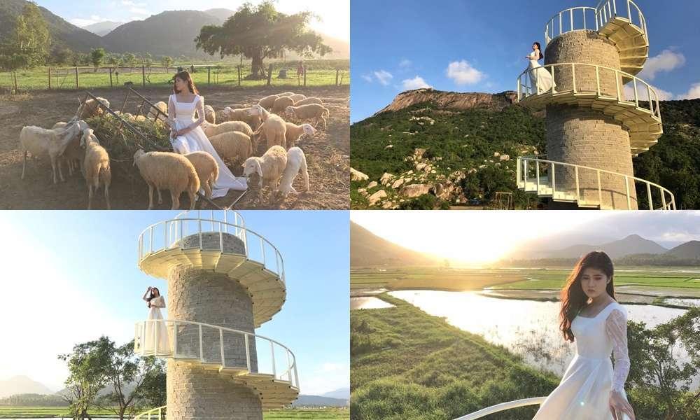 Dật spotlight mạng xã hội với đồng cừu Suối Tiên đẹp như thiên đường