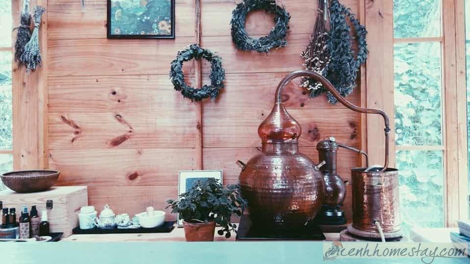 Homestay Naunau's Garden Đà Lạt cho khách trải nghiệm làm mỹ phẩm thiên nhiên