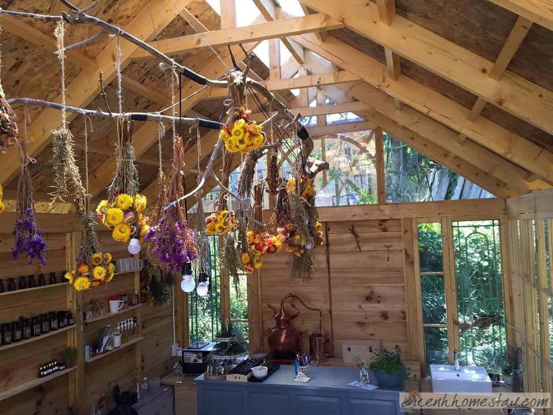 Naunau's Garden Homestay cho trải nghiệm làm mỹ phẩm thiên nhiên