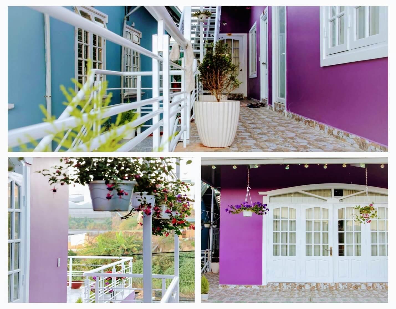 Homestay Purplehouse - ngôi nhà màu tím giữa thánh địa sống ảo Đà Lạt