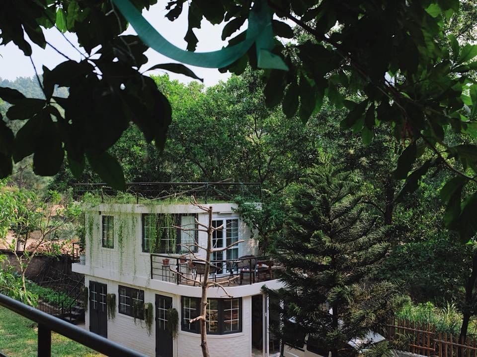 Nhà bên Rừng U Lesa: Review homestay nhà gỗ độc nhất vô nhị tại Hà Nội