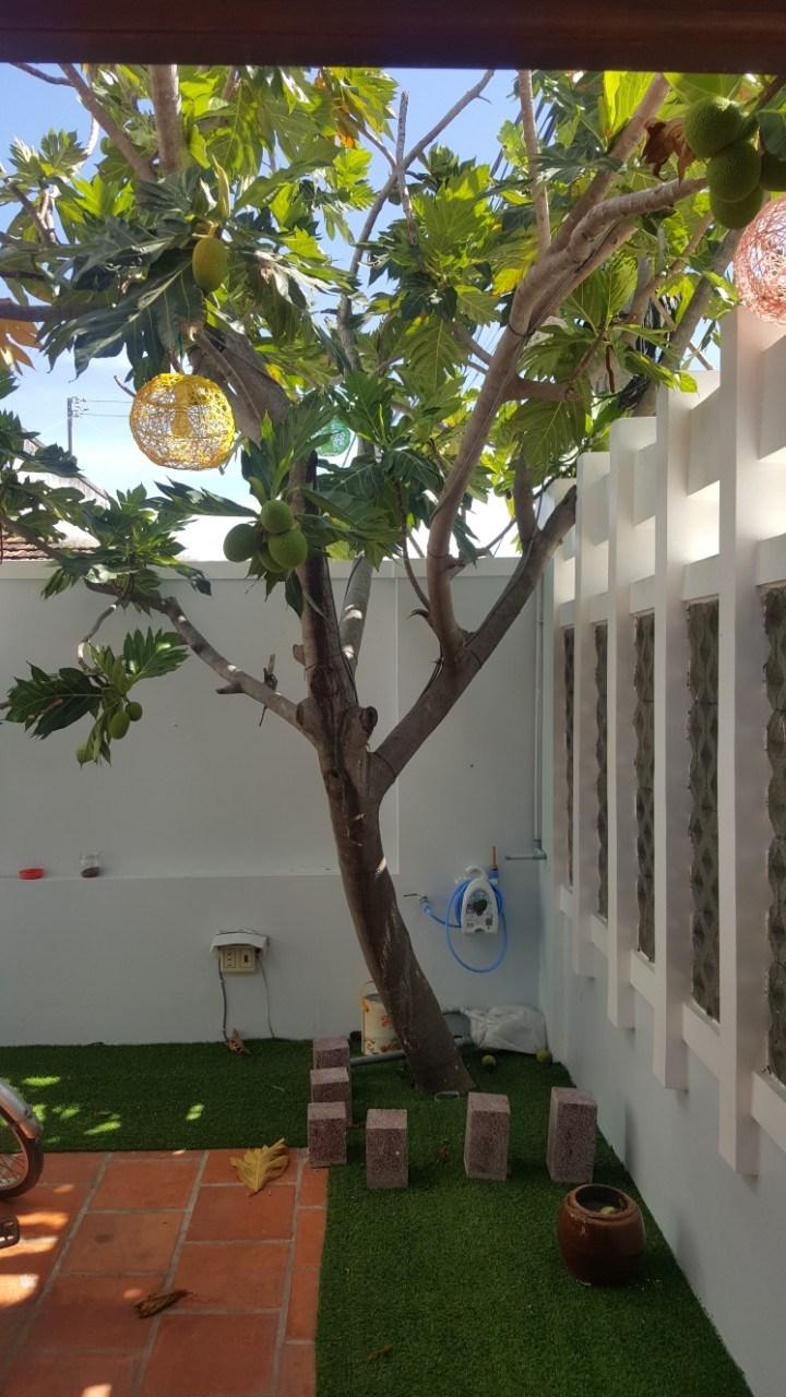 Top Villa Phan Rang Ninh Thuận giá rẻ nguyên căn cho thuê du lịch