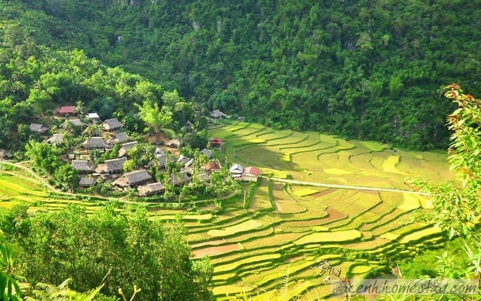 10 homestay Pù Luông - Thanh Hóa đẹp rẻ thích hợp nghỉ dưỡng khám phá