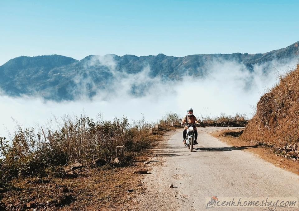 Top 5 Khách sạn, nhà nghỉ, homestay Tà Xùa giá rẻ view săn mây đẹp