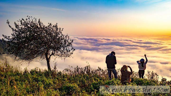Top homestay Tà Xùa giá rẻ chỉ 50k có view săn mây đẹp mơ màng
