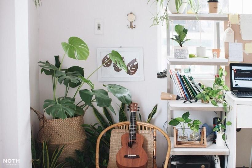 20 Địa chỉ shop bán đồ décor homestay tốt nhất tại TPHCM – Sài Gòn
