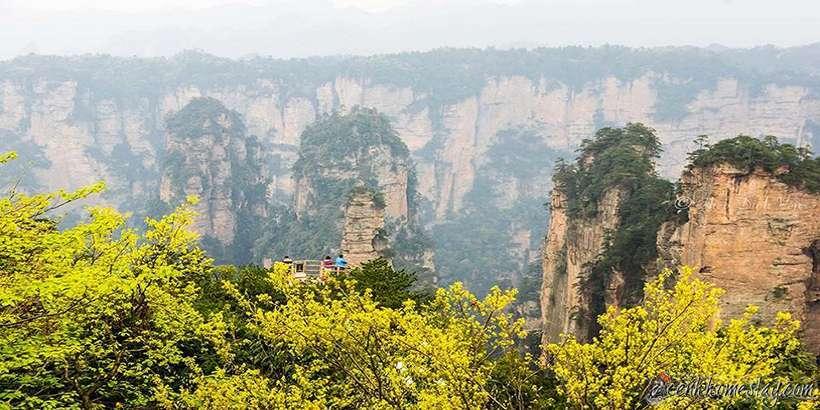 Review kinh nghiệm du lịch phượt Trương Gia Giới tự túc giá rẻ mới nhất