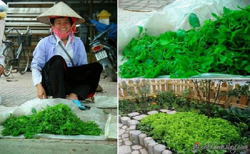 #Top 15 địa chỉ mua đặc sản Điện Biên làm quà ngon đáng để ghé thăm