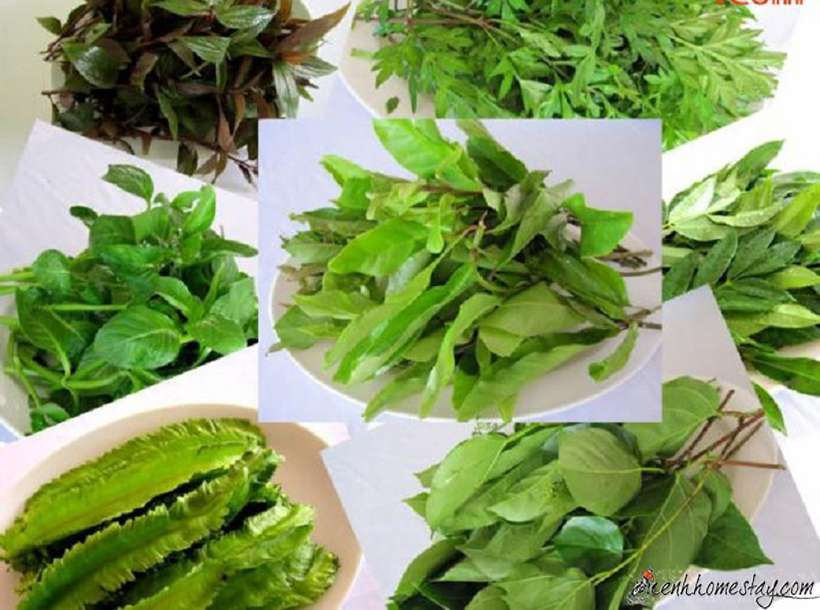 Top 12 địa chỉ mua đặc sản Tây Ninh làm quà ngon đáng để ghé thăm