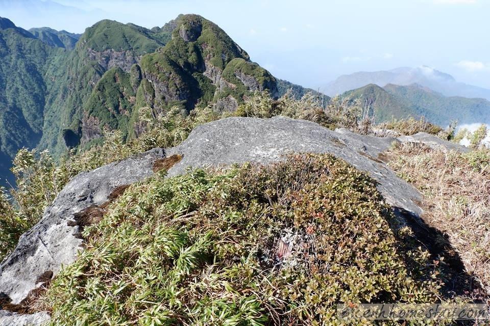 Ngũ Chỉ Sơn Sapa – Ngọn núi đẹp đáng mơ ước cần phải chinh phục ở Tây Bắc