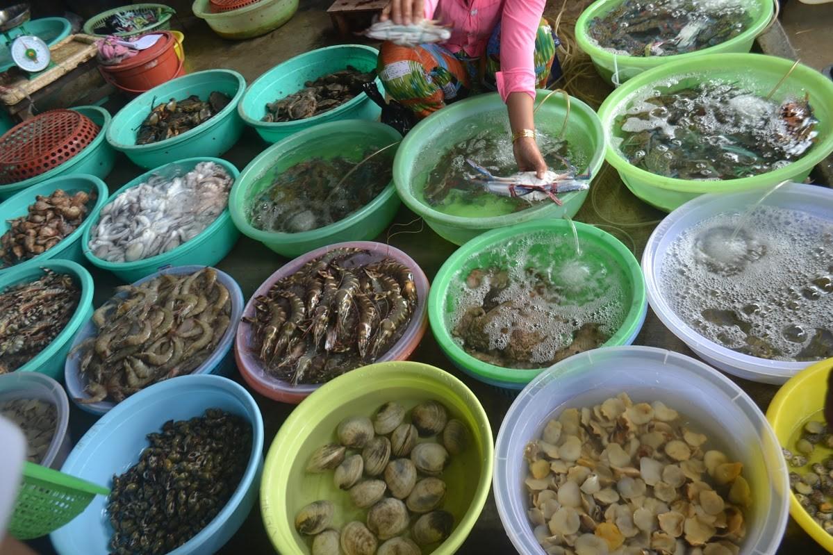 Top 10 Quán chợ vựa hải sản Côn Đảo tươi sống ngon nên mua khi du lịch