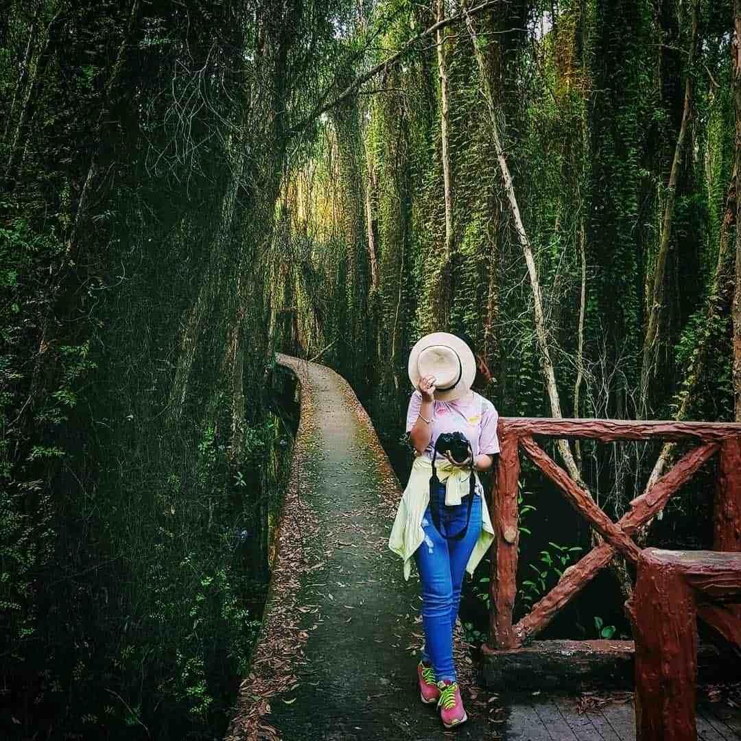 Kinh nghiệm du lịch làng nổi Tân Lập Long An: Đi về trong ngày chỉ tốn 200k