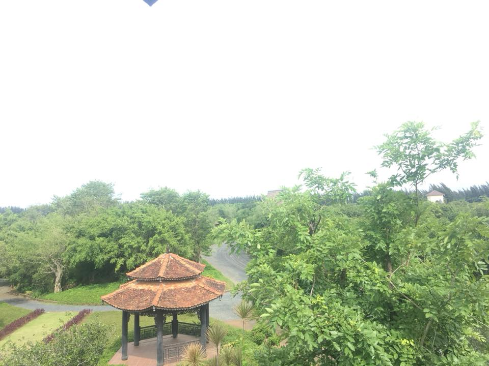 Top 10 Resort nhà nghỉ homestay khách sạn ở biển Cổ Thạch gần biển