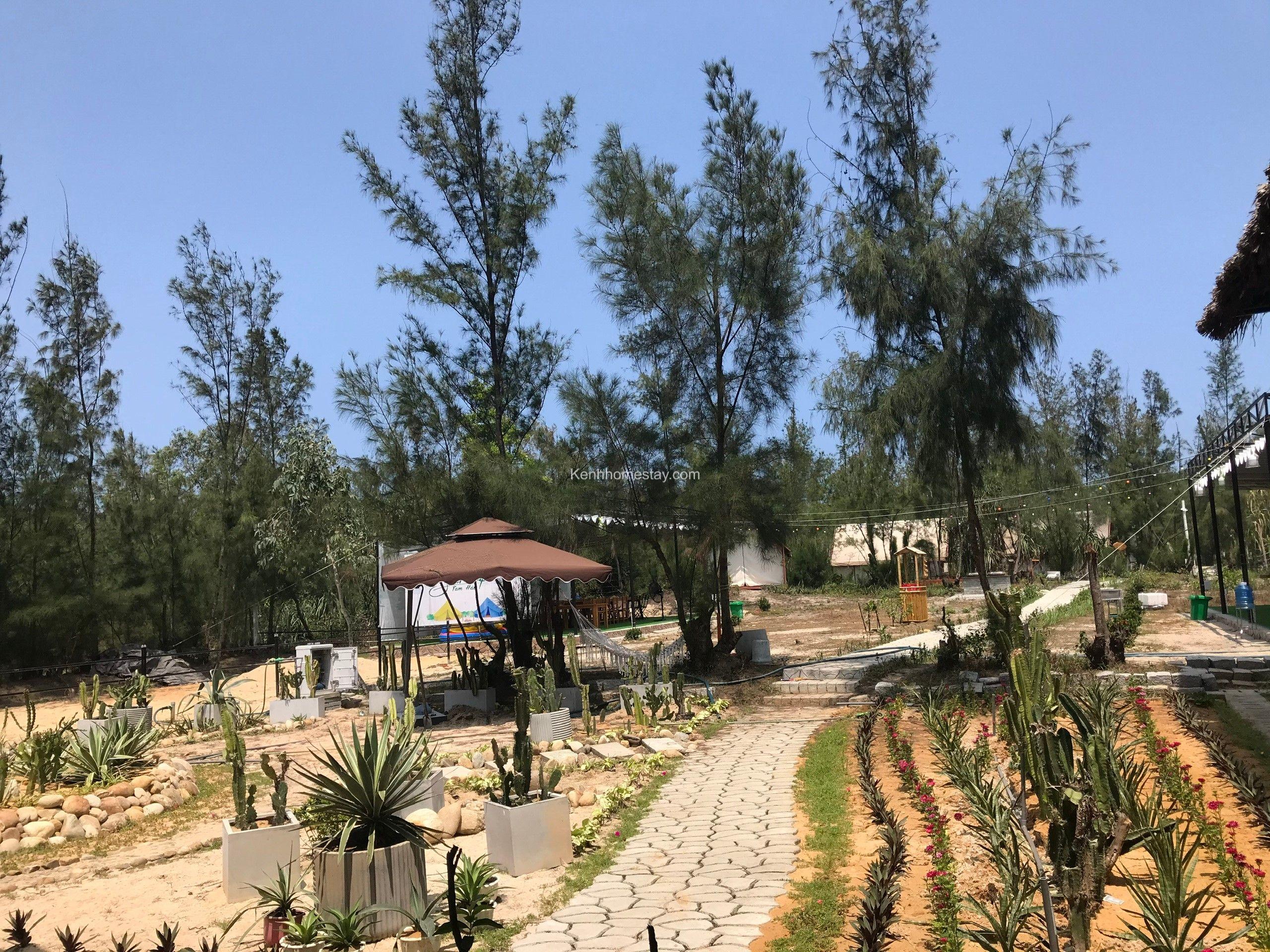 Trót yêu chốn an nhiên Seren Camp giữa biển Tam Hải hoang sơ